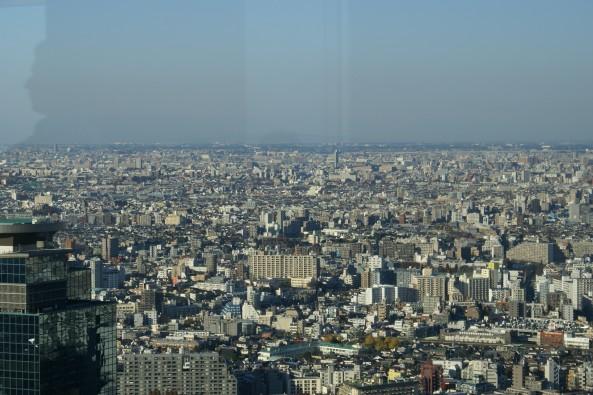 A few buildings in Tokyo